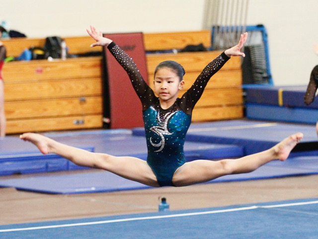 my meet scores online gymnastics Tumbletally - the premier gymnastics meet tracker app home ios faq reports for meet results by gymnast, or for the whole team calculation of team scores.