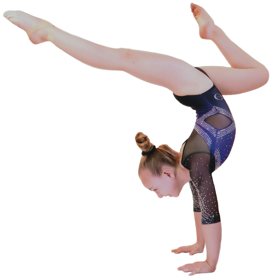 Results - USA Gymnastic Meet Scores Current Past and Future