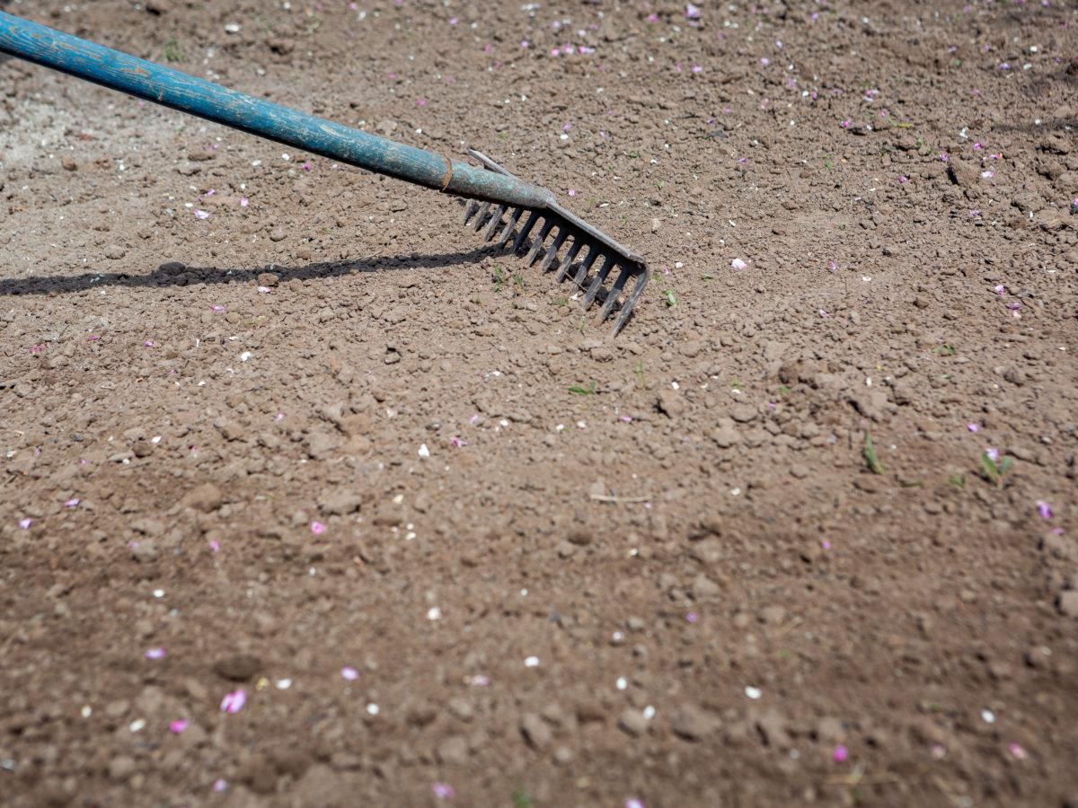 Grading soil for custom bocce ball court