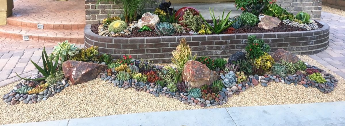 Rock Succulent Garden With Pebbles And Crushed Rock