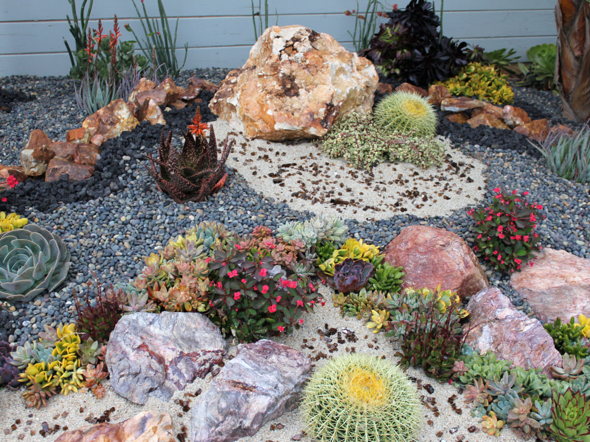 Boulders and crushed rock in succulent garden