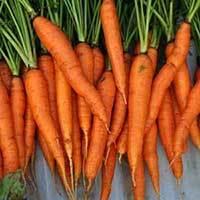 Carrot 500 gms