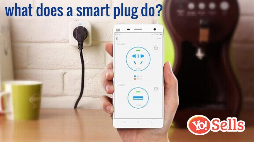 what does a smart plug do