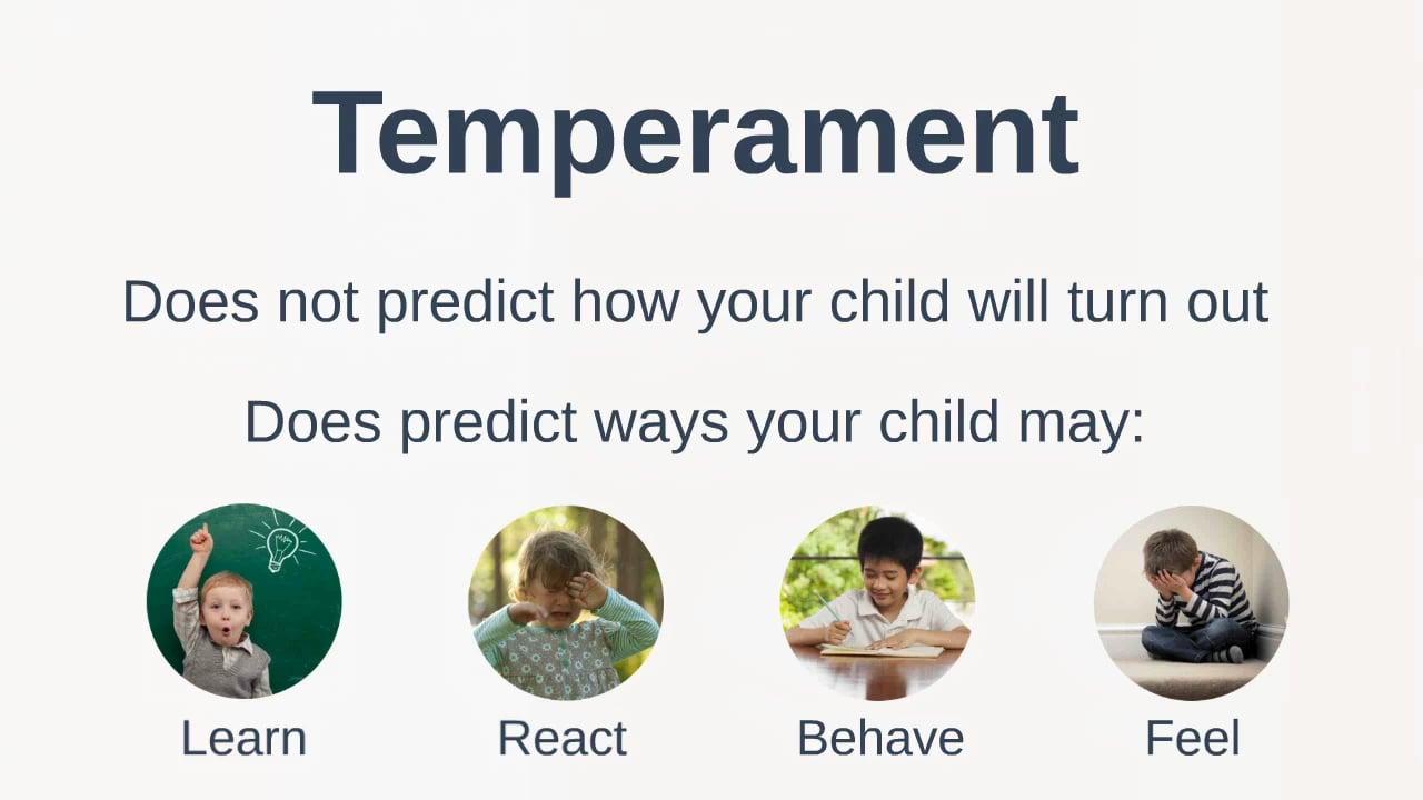 Your Childs Temperament 9 Basic Traits >> Your Child S Temperament Your Village